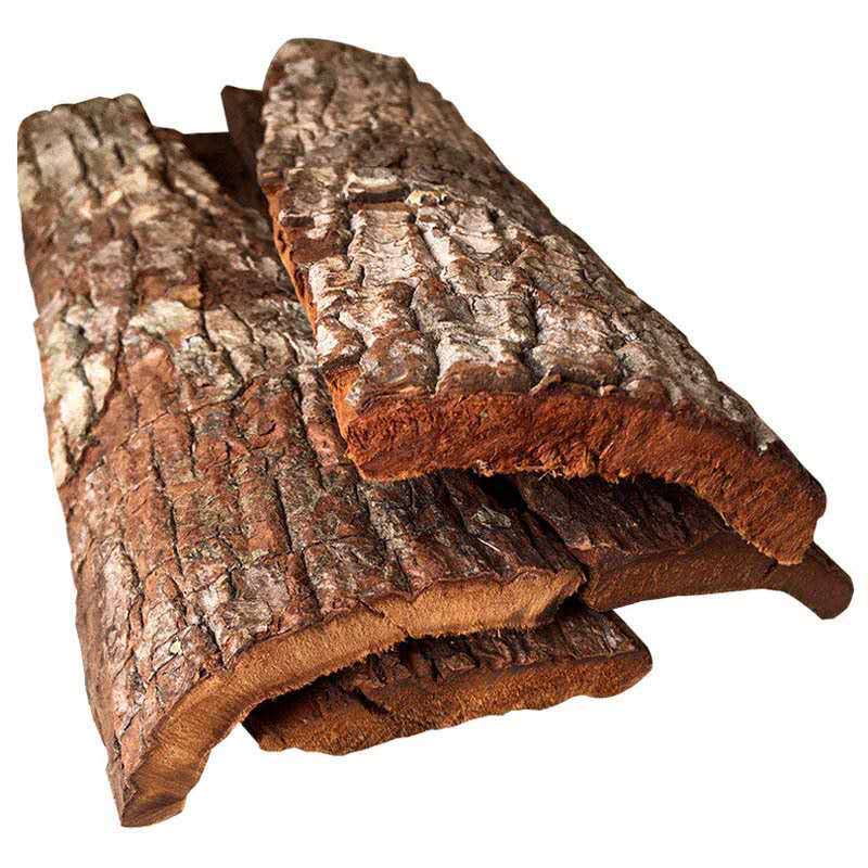 特厚卡比单树皮正宗非洲安哥拉树皮