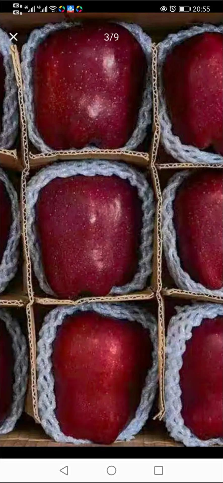 甘肃天水花牛苹果10斤