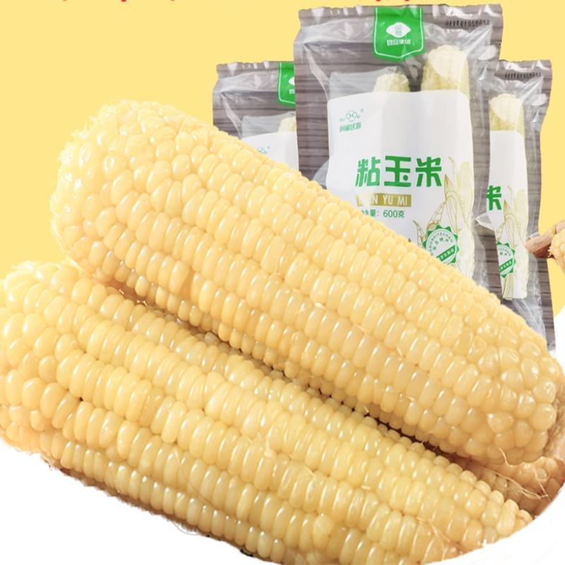 阿福送喜东北香糯玉米新鲜速冻黏粘玉米棒子白甜苞米8根早餐包邮