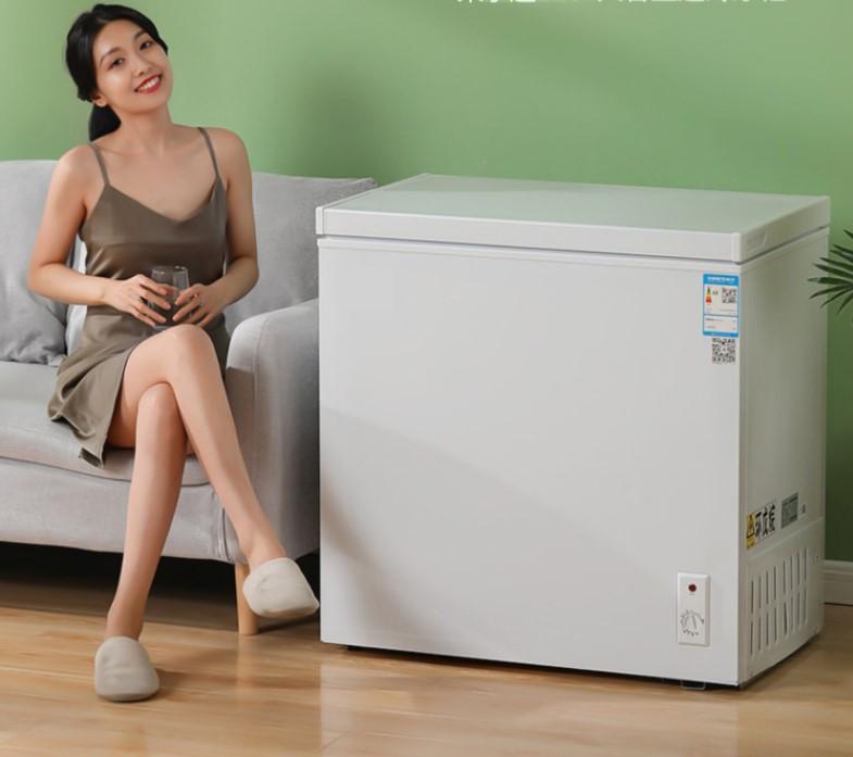 荣事达175L小冷柜家用商用大容量冷冻柜迷你冰柜小型节能双温冷藏