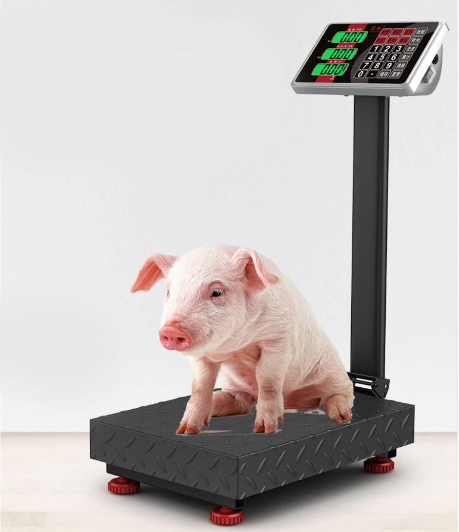 智能电子秤商用高精度小型家用电孑称重台秤100kg150公斤快递磅秤