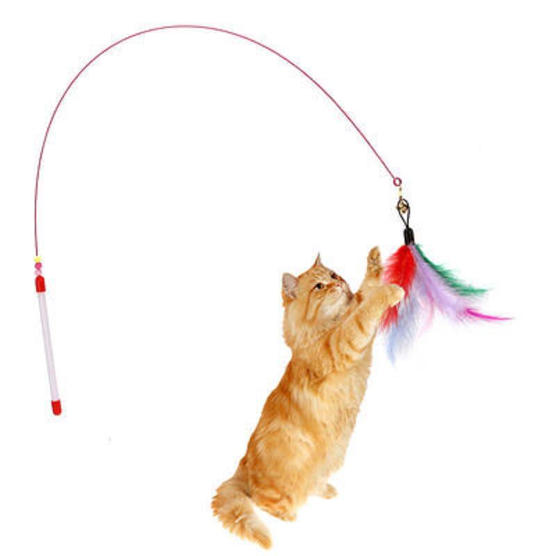 DA猫玩具逗猫棒钢丝彩色羽毛带铃铛逗猫玩具宠物猫训猫棒互动神器